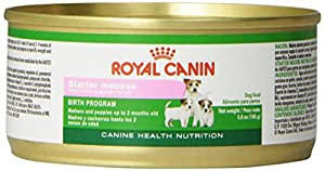 Royal Canin Canine Health Nutrition Starter Mousse Canned Dog Food (24 Pack), 5.8 oz/One Size