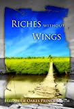 img - for Riches Without Wings: Riches Without Wings By Elizabeth Oakes Smith, Riches Without Wings Annotated book / textbook / text book