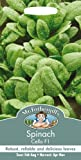Mr. Fothergill's 21318 300 Count Spinach Cello F1 Seed
