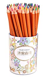 Drawfun 60 Assorted Color Pencils Colorful Pencil Set for Coloring Book, Art Drawing Color Pencils Set Writing, Drawing and Sketching.