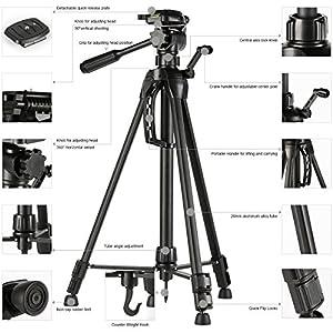 Lightweight Tripod, 60inch Tripod K&F Concept Tripods for Digital Cameras Canon Nikon Sony Tamorn with Tripod Bag