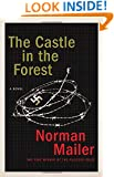 The Castle in the Forest: A Novel