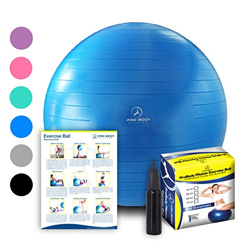 Exercise Ball - Professional Grade Anti-Burst Fitness, Balance Ball for Pilates, Yoga, Birthing, Stability Gym Workout Training and Physical Therapy (Blue, 55cm)