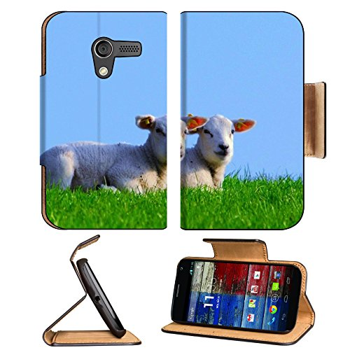 Baby Sheep Mutton Prairie Animals Motorola Moto X Flip Case Stand Magnetic Cover Open Ports Customized Made To Order Support Ready Premium Deluxe Pu Leather 5 7/16 Inch (138Mm) X 3 1/16 Inch (78Mm) X 9/16 Inch (14Mm) Luxlady Mobility Cover Professional Mo front-64772