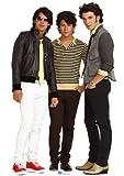 Jonas Brothers Standups