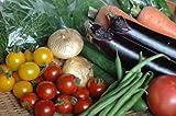 【寿山のたまて箱】九州野菜 鹿児島の野菜ソムリエが選ぶ季節の有機無農薬野菜8?9品セット