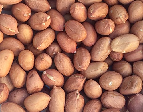 pinstar-supply-raw-red-skin-peanuts-5-pounds