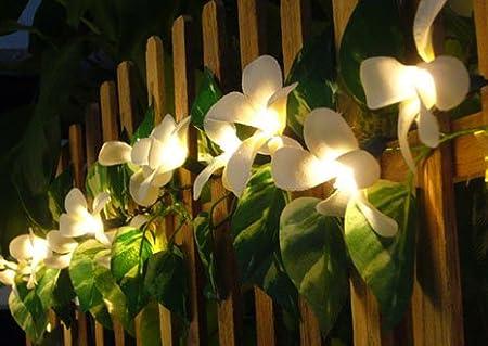 Flower Lights Australia Flower Party String Lights