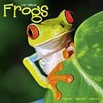 Frogs Calendar - 2016 Wall calendars...