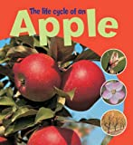 Learning About Life Cycles: The Life Cycle of an Apple Ruth Thomson