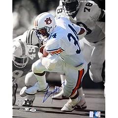 Bo Jackson Autographed Signed Auburn 16x20 Photo PSA DNA ID #74689
