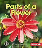 Parts of a Flower (First Step Nonfiction)