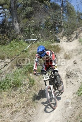 Wallmonkeys Peel and Stick Wall Decals - Downhill Mountain Biking - 18