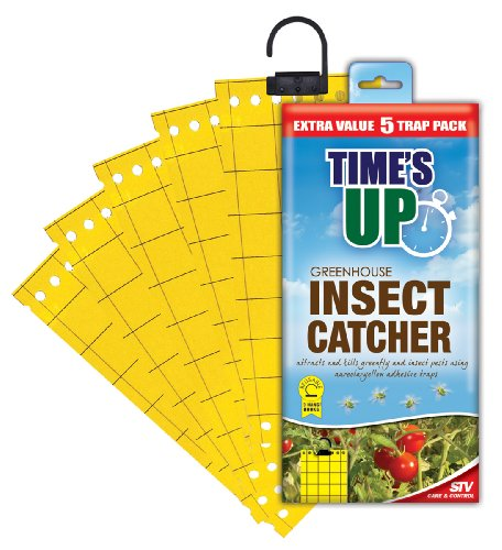 Times Up Greenhouse Insect Catcher (5 Traps)
