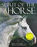 Spirit of the Horse