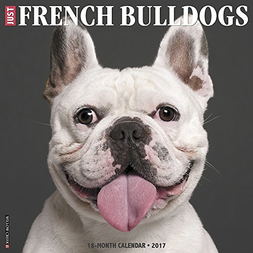 French Bulldogs 2017 Wall Calendar (French Bulldog Puppies Calendar compare prices)