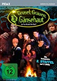 Grusel, Grauen, Gänsehaut - Staffel 2 (2 DVDs)