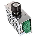 4000W 220V AC SCR Voltage Regulator Dimmer Electric Motor Speed Controller Thermostat