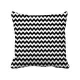 Black And White Shower Curtain Pattern Cushion Cover (16x16) Inch