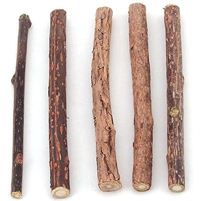 Catnip Silvervine Sticks Cat Treat Chew Toy