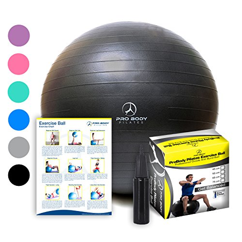 Exercise Ball - Professional Grade Anti-Burst Fitness, Balance Ball for Pilates, Yoga, Birthing, Stability Gym Workout Training and Physical Therapy (Black, 55 cm)