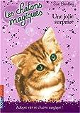 echange, troc Sue Bentley - Les chatons magiques, Tome 1 : Une jolie surprise