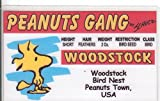Woodstock the bird of Charlie Brown and the Peanuts Gang Novelty Drivers License / Fake I.d. Identification for Charles Schulz Fans
