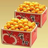 訳あり みかん 20kg(10kg×2箱) 愛媛西宇和産 日の丸 川上 真穴と同一産地 ミカン フルーツ 果物 産地直送