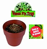 Grow Your Own Venus Fly Trap - A Gardeners Novelty Gift - Ideal For Novelty Christmas Present or Stocking Filler for the Gardener Or Teaching Children About Growing Plants