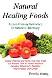 Natural Healing Foods: A User-Friendly Reference to Natures Pharmacy