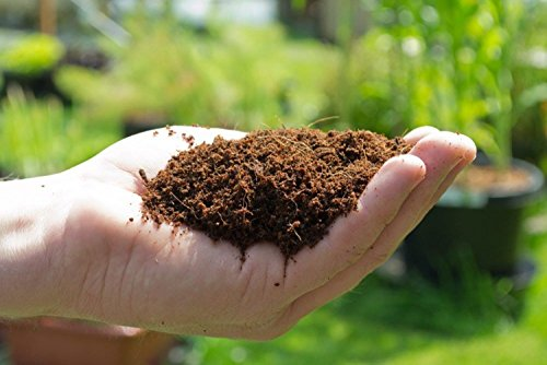 natures-footprint-650g-coconut-coir-brick