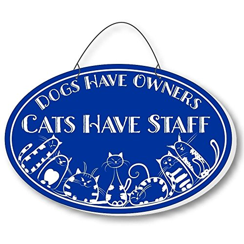 Cool Cats Cat-Gang Oval Laser-Etched 3-In-1 Plaques Have Staff Blue front-431756