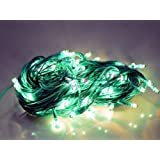 ASCENSION 10 Metre Green Rice Lights Serial Bulb Decoration Light For Diwali Navratra Christmas 1 Piece