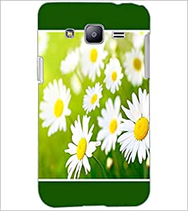 PrintDhaba Flowers D-1434 Back Case Cover for SAMSUNG GALAXY J2 (Multi-Coloured)