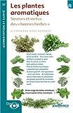 Les plantes aromatiques : Saveurs et vertus des