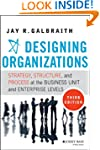 Designing Organizations: Strategy, St...