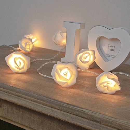 Rosen Lichterkette weiß, batteriebetrieben, mit Timer, 20 LEDs warmweiß, 3,8m, von Festive Lights