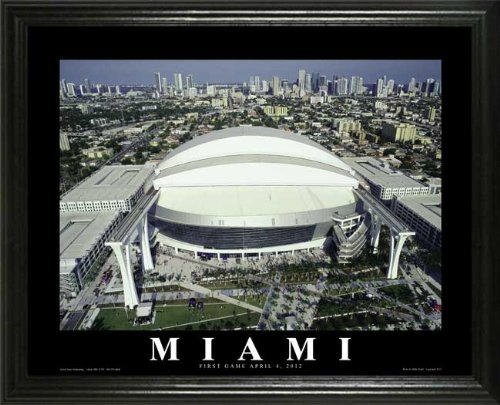 Miami Marlins - Marlins Park - Lg - Framed Poster Print at Amazon.com
