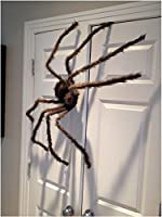 Halloween Giant Spider Posable Decoration Outdoor Home Decor Yard Scary Grey (LSBD-USA) from LSBD-USA