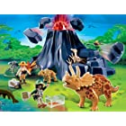 Playmobil Dinosaur Sets