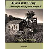 A Child on the Graigby Colin Gronow