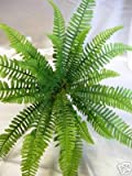 Artificial Boston Fern Foliage Plant Ideal for snake vivarium