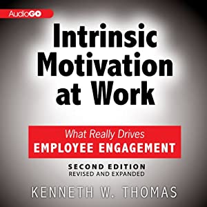 Intrinsic Motivation at Work: What Really Drives Employee Engagement, 2nd Edition | [Kenneth Thomas]