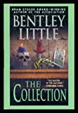 THE COLLECTION: The Sanctuary; The Woods Be Dark; The Phonebook Man; Estoppel; The Washingtonians; Life with Father; Bob; Bumblebee; Lethe Dreams; Paperwork; The Idol; Skin; The Man in the Passenger Seat; Comes the Bad Time; Against the Pale Sand (073942761X) by Little, Bentley