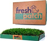 Fresh Patch (Trial Pack) - 2nd Fresh Patch Arrives Two Weeks After the First Shipment