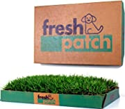 Fresh Patch Disposable Dog Potty with REAL Grass - As Seen on SHARK TANK