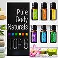 Aromatherapy Top 6 Essential Oils - Therapeutic grade - with Lavender, Tea Tree, Eucalyptus, Sweet Orange, Lemongrass & Peppermint - Basic Sampler Gift Set & Premium Kit - 6/10 M - Parent