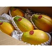 フルーツyamakiti 宮崎産 パパイヤ 2キロ 3~5玉