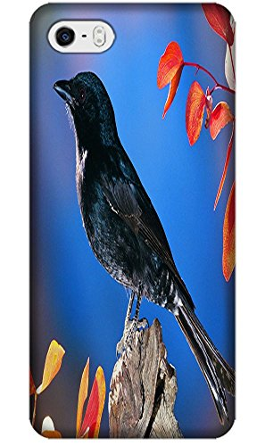 Phones Accessories Nice Birds Stand On The Trees Cute Design Cases For Iphone 5/5S # 8