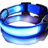 New Blue Nylon LED Dog Night Safety Collar Flashing Light up W/circular Pendant Collar--XL